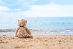 玩具熊单独坐在海滨 免版税库存照片