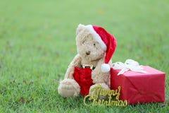 玩具熊和礼物盒在草坪 库存图片
