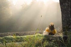 玩具熊和被拥抱的稻草人 免版税库存照片