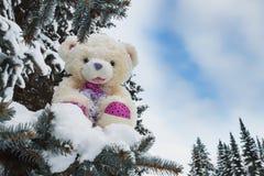 玩具熊在一个森林冬天 免版税库存照片