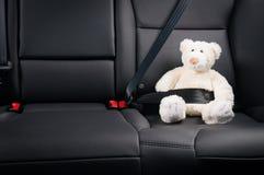 玩具熊在汽车的后座紧固了 图库摄影