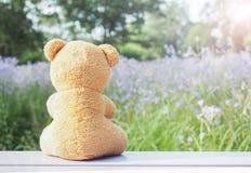 玩具熊坐木头 库存照片