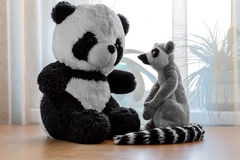 玩具熊猫和狐猴 库存照片
