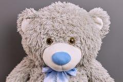 玩具熊的头 库存图片