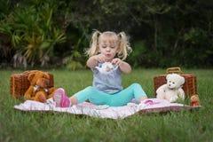 玩具熊茶会 库存照片