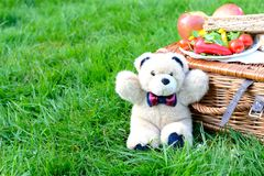 玩具熊野餐 免版税库存图片