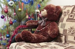 玩具熊,圣诞树 免版税库存照片