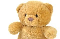 玩具熊 免版税库存照片