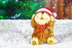 玩具狗-新年的标志在雪下的以冷杉为背景分支 免版税图库摄影