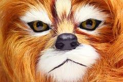 玩具狮子 免版税库存照片