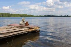 玩具狼和玩具熊坐跳船在湖附近 库存照片