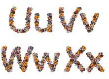 玩具的五颜六色的字母表 免版税图库摄影