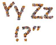 玩具的五颜六色的字母表 免版税库存图片