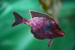 玩具鱼游泳 库存图片