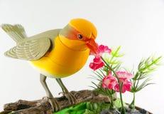 玩具鸟。 免版税库存图片