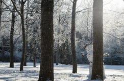 玩捉迷藏的雪人 库存图片