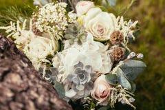 玫瑰、多汁植物和其他花在婚礼花束在绿色 免版税库存图片