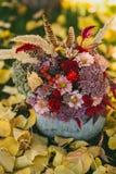 玫瑰、莓果、菊花和羽毛红色秋天花束在一个花瓶从南瓜在草与下落的叶子 库存照片