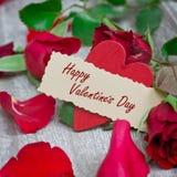 玫瑰为情人节 库存图片