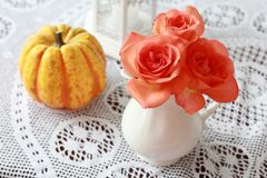 玫瑰和南瓜 库存照片