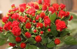 玫瑰和浆果现代花束  库存图片