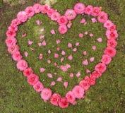 玫瑰和玫瑰花瓣的心脏 免版税库存照片