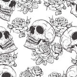 玫瑰和头骨 库存图片