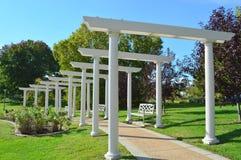 玫瑰园在华盛顿公园植物园里 免版税库存照片