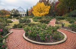 玫瑰园,伯明翰植物园 库存图片