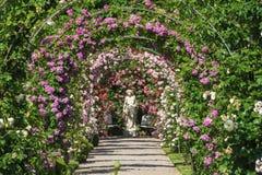 玫瑰园Beutig在Baden-Baden 库存照片