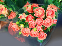 玫瑰在商店 免版税库存照片