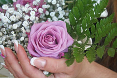 玫瑰在手上 免版税库存照片