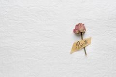玫瑰干花在白皮书的 桃红色 黄色 免版税库存图片