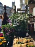 玫瑰待售, BHV边路,巴黎,法国 库存照片