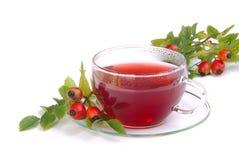 玫瑰果茶 库存照片