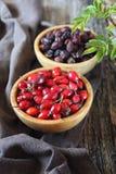 玫瑰果莓果,新鲜和烘干 免版税库存照片