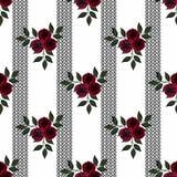 玫瑰样式无缝的花在白色背景的在黑条纹 库存图片