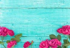 玫瑰框架在绿松石土气木背景的 春天flo 库存照片
