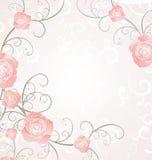 玫瑰框架桃红色,言情爱 库存照片