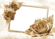 玫瑰框架 库存照片