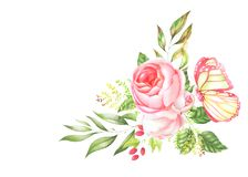 玫瑰植物的水彩花束与蝴蝶的 图库摄影