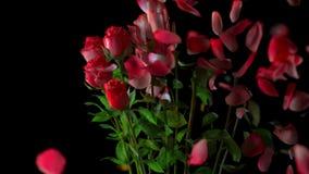 玫瑰残破的花束