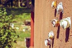 玫瑰由纸制成作为装饰在村庄房子,塞尔维亚的墙壁 免版税图库摄影
