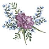 玫瑰的构成与野花和蜂的 背景查出的白色 免版税库存照片