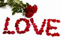 从玫瑰的瓣的题字爱,并且一个上升了,隔绝, 库存图片