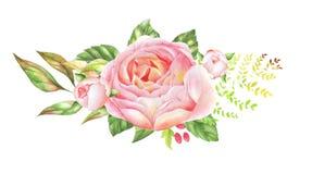 玫瑰精美水彩花束  免版税库存照片