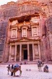 玫瑰红的财宝下午骆驼Siq Petra约旦 库存照片
