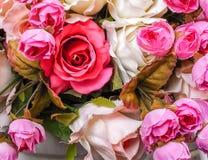 玫瑰背景 免版税库存图片