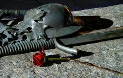 玫瑰色战士 库存图片