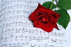 玫瑰色歌曲 库存照片